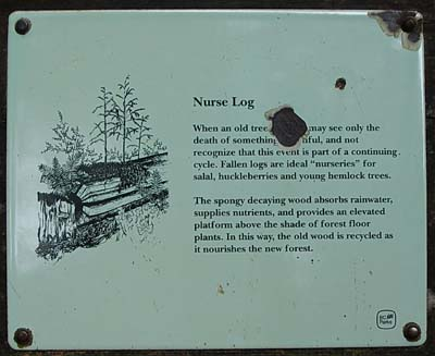 Nurse Log sign