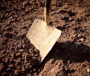 shovel dirt