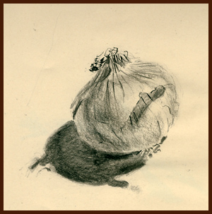 onion drawing by Dorothy, 1941