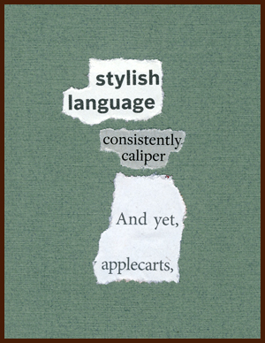 found poem by j.i. kleinberg ~ stylish language