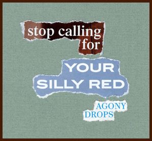 found poem by j.i. kleinberg ~ stop calling