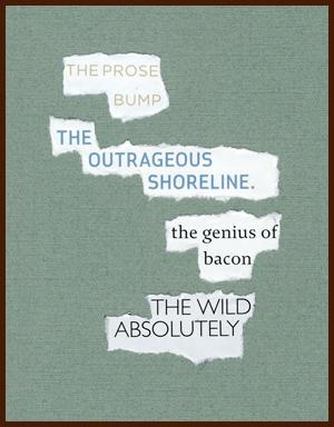 found poem by j.i. kleinberg ~ the prose bump