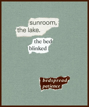 found poem © j.i. kleinberg ~ sunroom