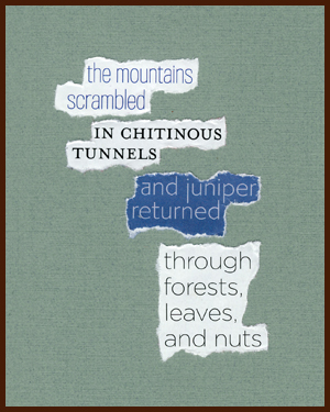 found poem © j.i. kleinberg ~ the mountains