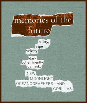 found poem © j.i. kleinberg ~ memories of the future