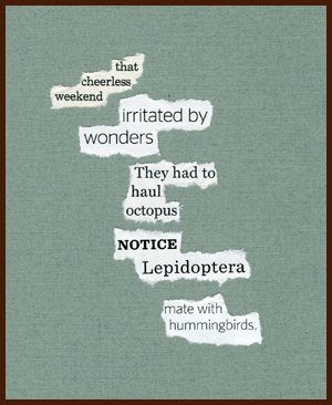 found poem © j.i. kleinberg ~ that cheerless weekend