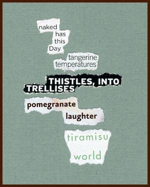 found poem © j.i. kleinberg ~ naked