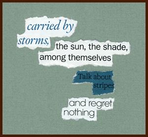 found poem © j.i. kleinberg ~ carried