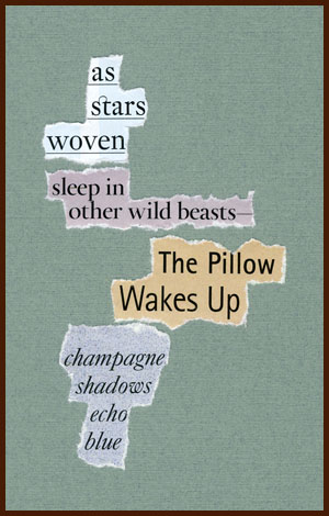 found poem © j.i. kleinberg ~ as stars