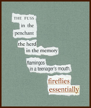 found poem © j.i. kleinberg ~ THE FUSS