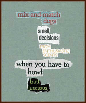 found poem © j.i. kleinberg ~ mix-and-match