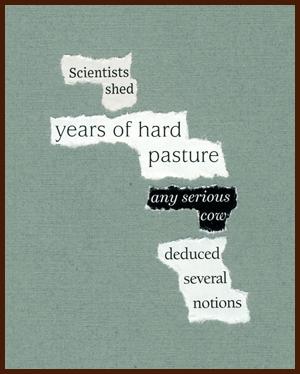 found poem © j.i. kleinberg ~ Scientists