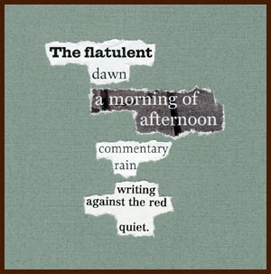 found poem © j.i. kleinberg ~ The flatulent