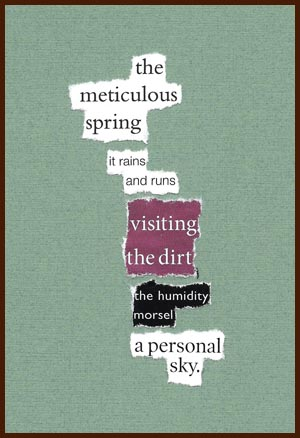 found poem © j.i. kleinberg ~ the meticulous