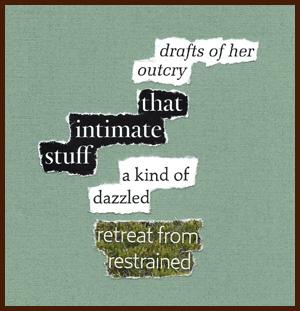 found poem © j.i. kleinberg ~ drafts