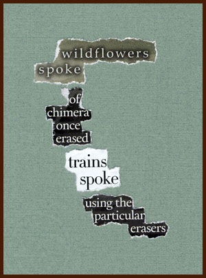 found poem © j.i. kleinberg ~ wildflowers