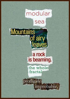 found poem © j.i. kleinberg ~ modular