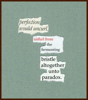 found poem © j.i. kleinberg ~ perfection