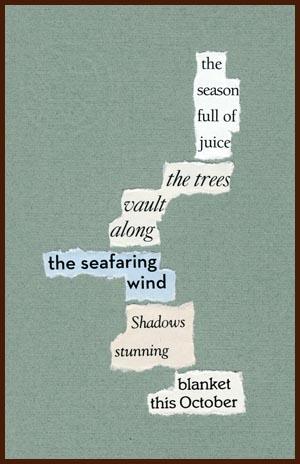 found poem © j.i. kleinberg ~ the season