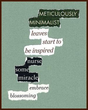 found poem © j.i. kleinberg ~ METICULOUSLY