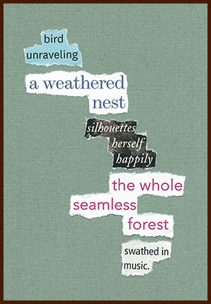 found poem © j.i. kleinberg ~ bird