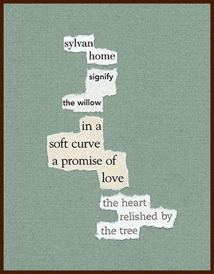 found poem © j.i. kleinberg ~ watery