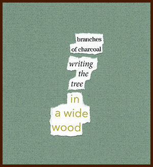 found poem © j.i. kleinberg ~ branches