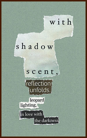 found poem © j.i. kleinberg ~ with shadow