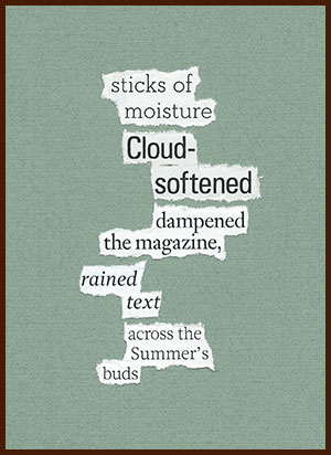 found poem © j.i. kleinberg ~ sticks