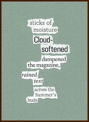 found poem © j.i. kleinberg ~ sticks