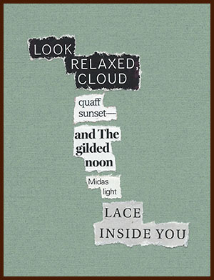 found poem © j.i. kleinberg ~ LOOK