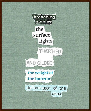 found poem © j.i. kleinberg ~ breaching