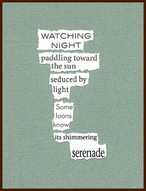 found poem © j.i. kleinberg ~ WATCHING