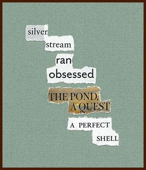 found poem © j.i. kleinberg ~ silver