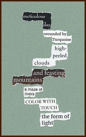 found poem © j.i. kleinberg ~ meticulous