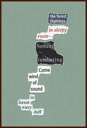 found poem © j.i. kleinberg ~ the forest
