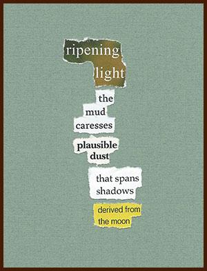 found poem © j.i. kleinberg ~ ripening