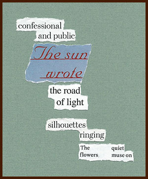 found poem © j.i. kleinberg ~ confessional