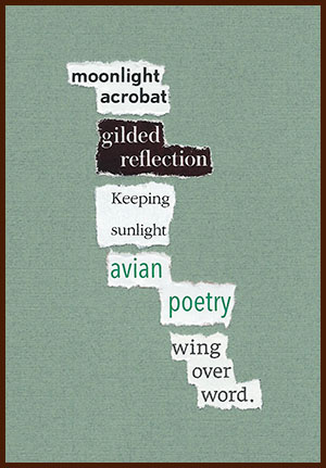 found poem © j.i. kleinberg ~ moonlight