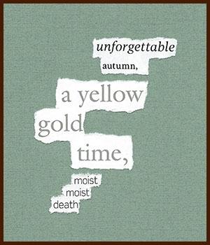 found poem © j.i. kleinberg ~ unforgettable