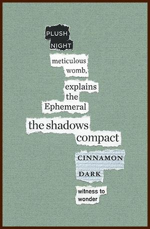 found poem © j.i. kleinberg ~ PLUSH