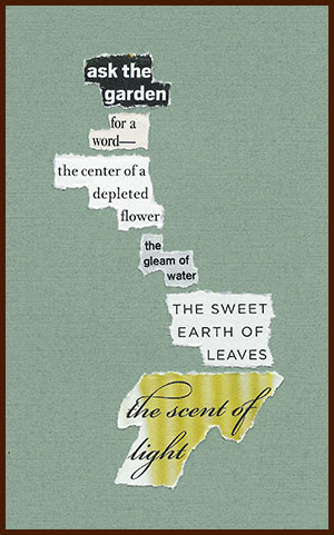 found poem © j.i. kleinberg ~ ask the garden