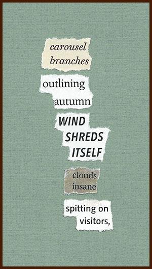 found poem © j.i. kleinberg ~ carousel