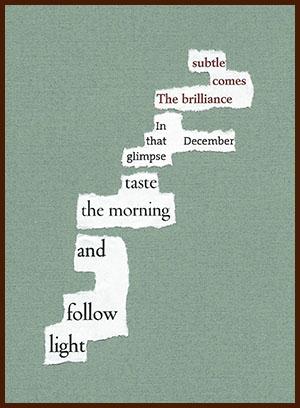 found poem © j.i. kleinberg ~ subtle