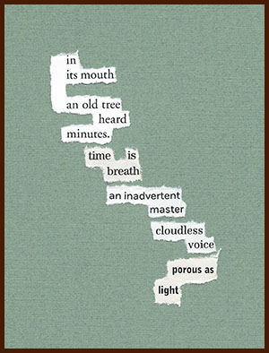 found poem © j.i. kleinberg ~ in its mouth