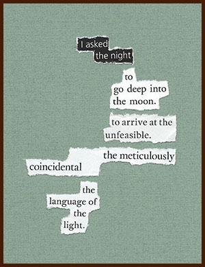found poem © j.i. kleinberg ~ I asked