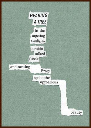 found poem © j.i. kleinberg ~ HEARING