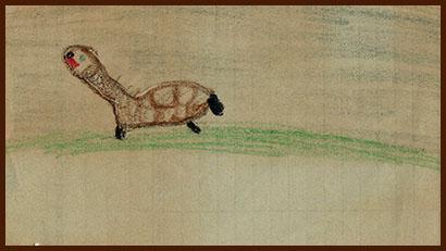 tortoise by jik