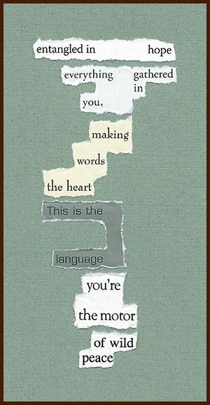 found poem © j.i. kleinberg ~ entangled