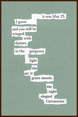 found poem © j.i. kleinberg ~ It was May 25